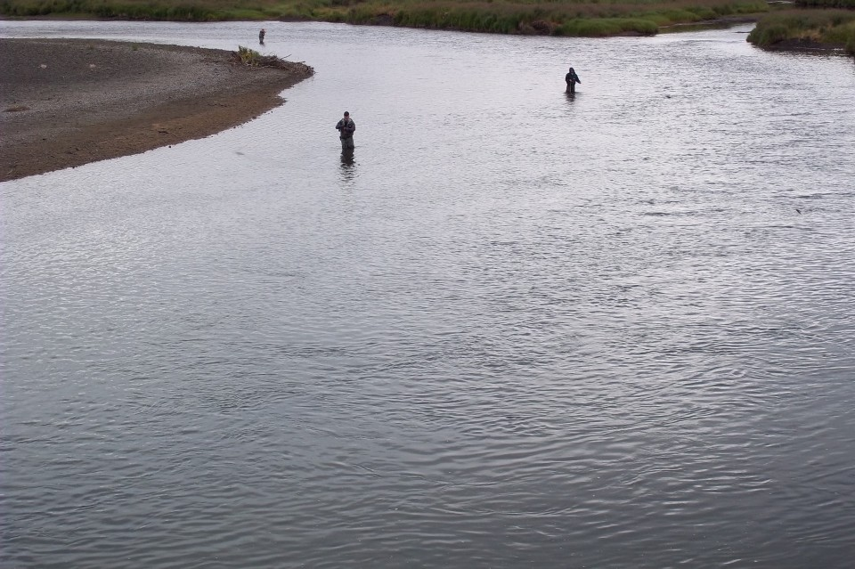 Main fork goodnews river fly fishing wild river fish for Fish on main